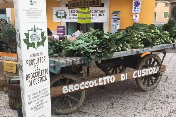 Broccoletto Pesto